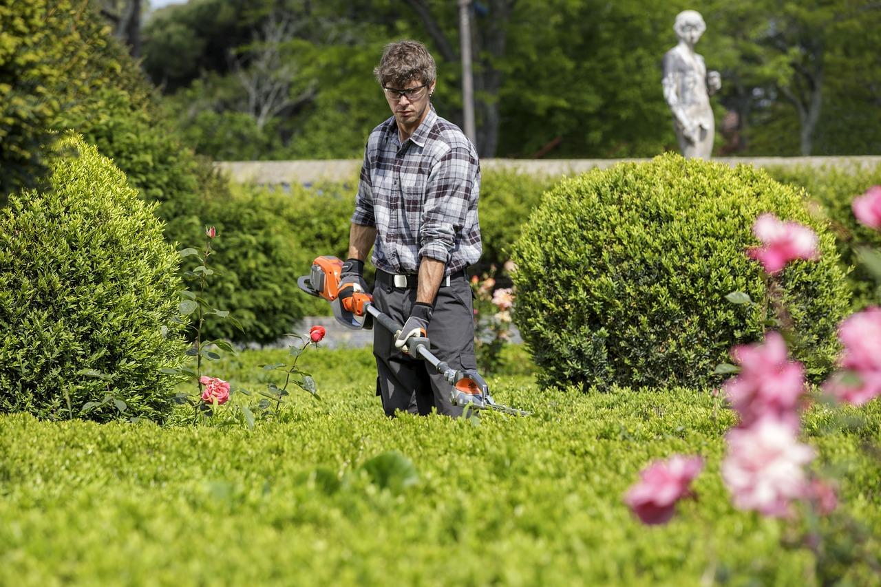 VERDINOVA entretien jardin